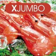 加拿大ATC牡丹蝦 XJUMBO (約11-14隻 約1kg)