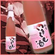 日本原裝進口 愛知県相生楊梅酒 500ml
