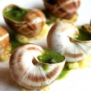 法國香草牛油蝸牛 L (12隻入)