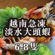 越南急凍淡水大頭蝦 (6-8隻入 約500g)
