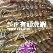 越南有頭虎蝦 (8隻入 約300g)