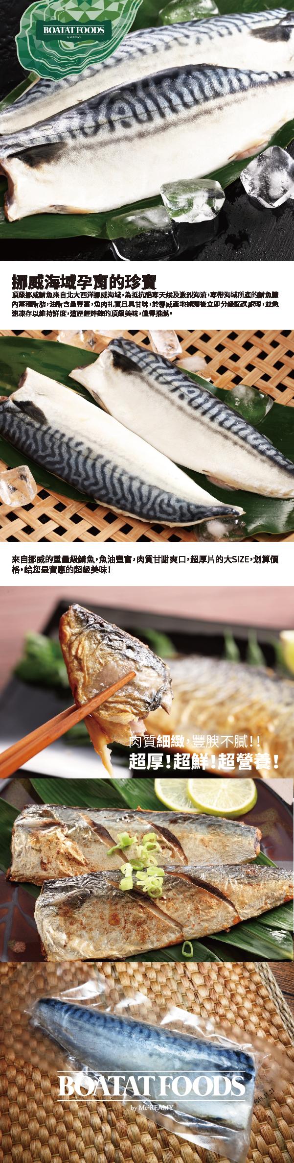 mackerel-01.png